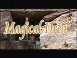 Magical Dream - musique de ABDJ - clip d' artistereveur
