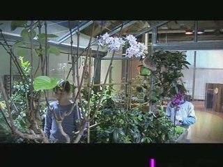 Le jardin de la Cité des enfants 5-12 ans