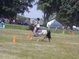 2 tasses le 1 juin 2009 pony games