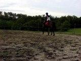 premiers sauts avec Rox