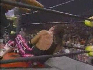 "Bret Hart vs. ""Hollywood"" Hulk Hogan"