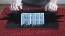 jérôme vittecoq magie havre close tour carte billet