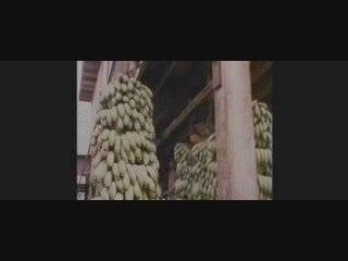JFK Caso abierto (clip de La película)