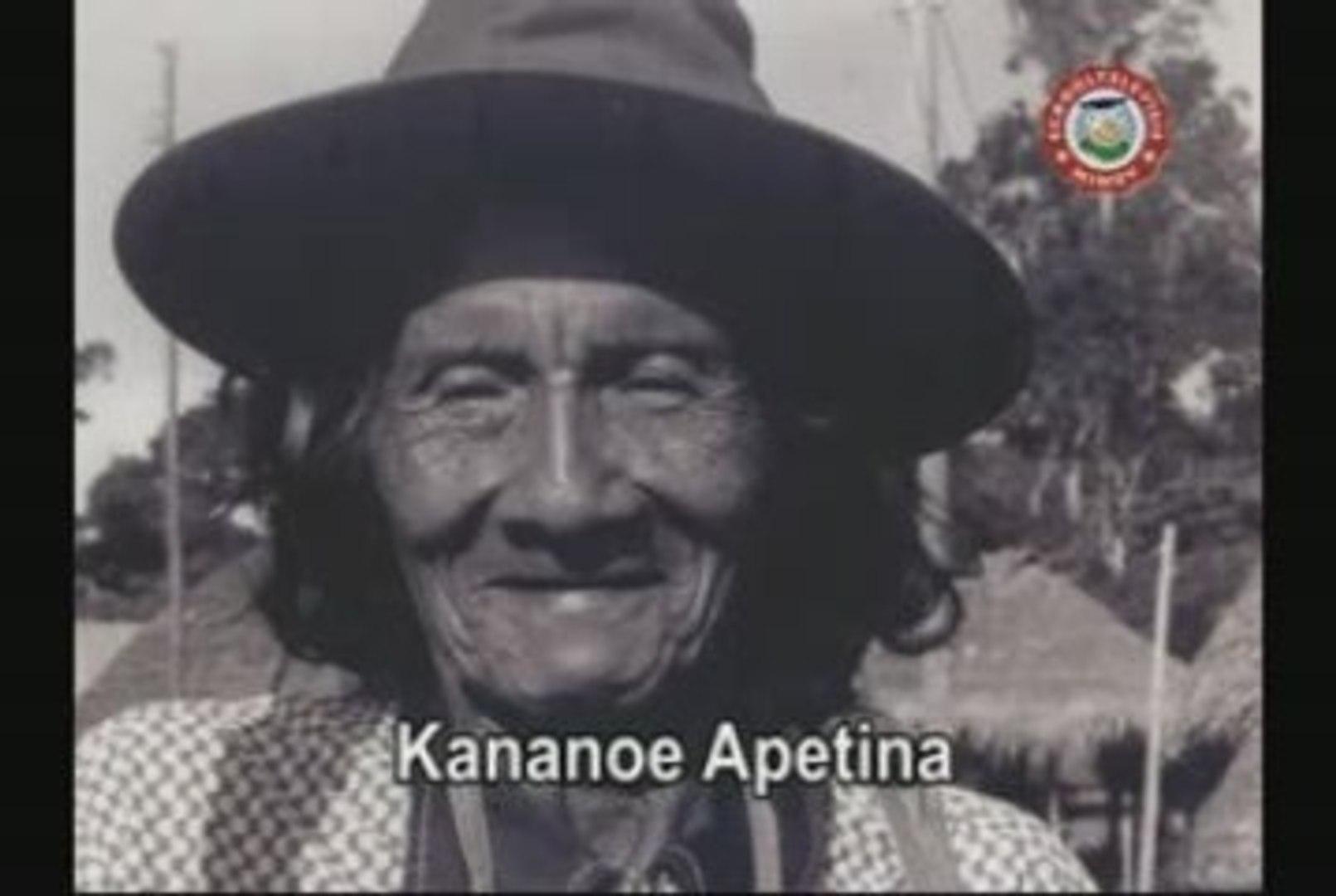 De Wajanas in Apetina - Deel 1