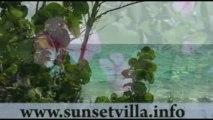 Sunset Villa at Rose Cove Eleuthera Island Bahamas
