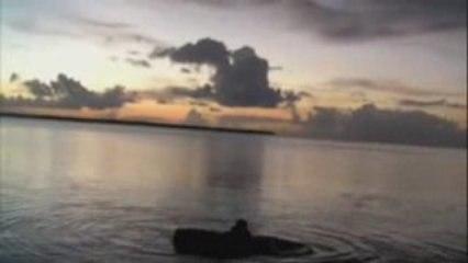 Cisco Cast : Wakeboard, barefoot, mono ski en Guadeloupe